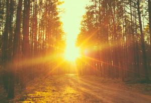 Coming Through The Fire: Your Road Less Traveled