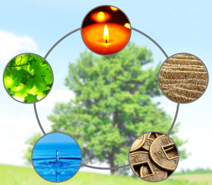 Feng Shui Aspects for July 2015