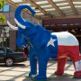 5 Communication Perspectives from the RNC